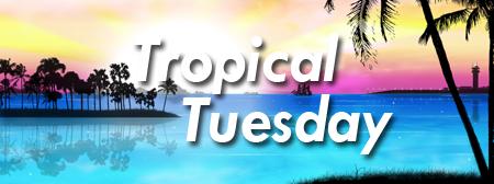 Tropical Tuesday