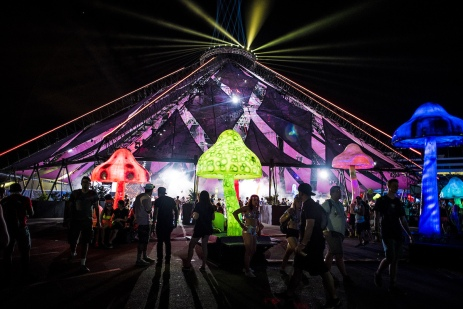 scenes-from-day-two-of-edc-2016-body-image-1466366255